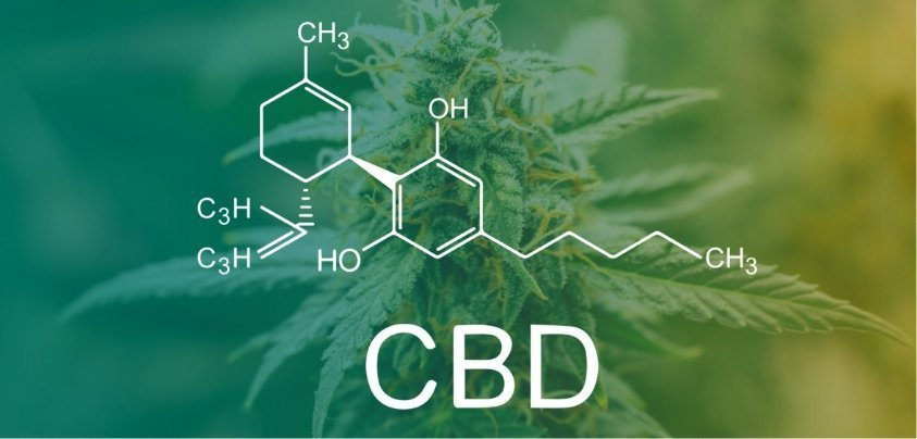 What is the Difference Between Full-Spectrum, Broad-Spectrum, and CBD Isolate?